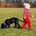 Kids en huisdieren: een ideale combi?